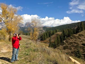 Tony scoping out the scenery along the way to Granite Hot Springs on USFS Road 30500