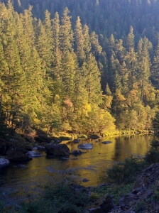 Late afternoon along the Middle Umpqua River
