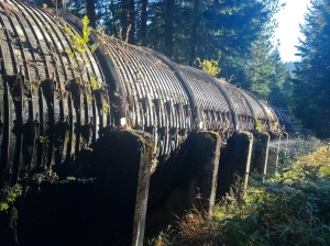 Wooden aquaduct near the Tokatee Falls trailhead in Oregon