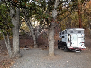 Camp site among the pin oaks at the USFS campground Pit River