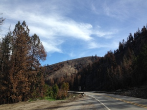 Ravages of the Carlton Complex fire along highway 153 along the Methow River